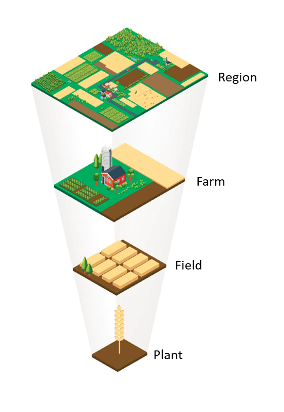 Investigation levels of the NOcsPS cropping system